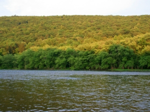 Juniata River View