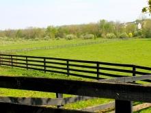 Virginia pasture land