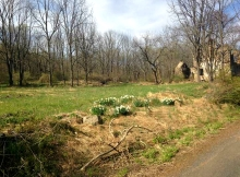 Stone Ruins, Upper Bucks County, Pennsylvania, remains of old stone farmhouse, old stone houses