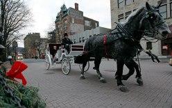 Bethlehem Star Tours And Travel