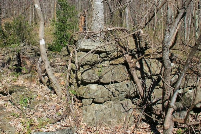 Farmland Madison Virginia, old stone foundation, old stone ruins, farmland for sale, Rapidan Wildlife Management Area